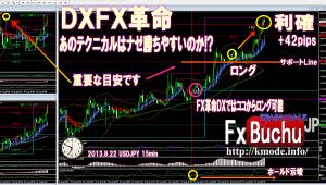 2013.8.22_fx_kakumei_dx_buchujp