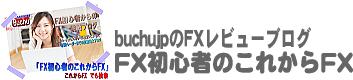 FX初心者のこれからFX